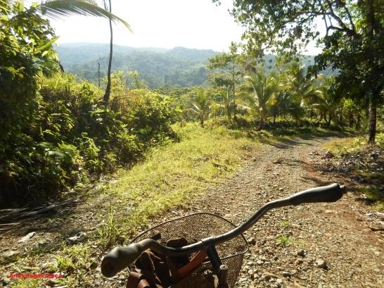 Kostaryka Peninsula Osa górska ścieżka rowerowa/un bicipaseo por las montañas de Costa Rica,Peninsula Osa