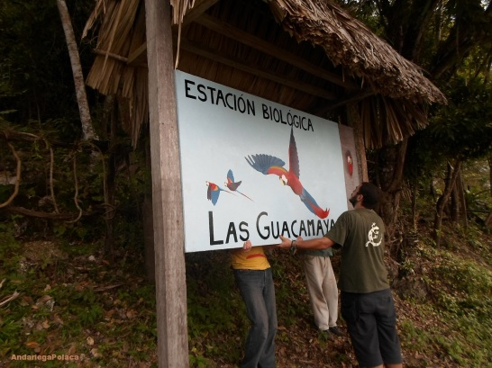 Estación biologica en parque Lagunas del Tigre-Guatemala/Stacja biologiczna w parku narodowym w Gwatemali