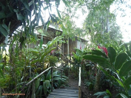 Posadas en Nicaragua, rio San Juan, Bocas de Sabalo