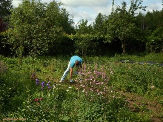 Praca w ogrodzie/el trabajo en la huerta