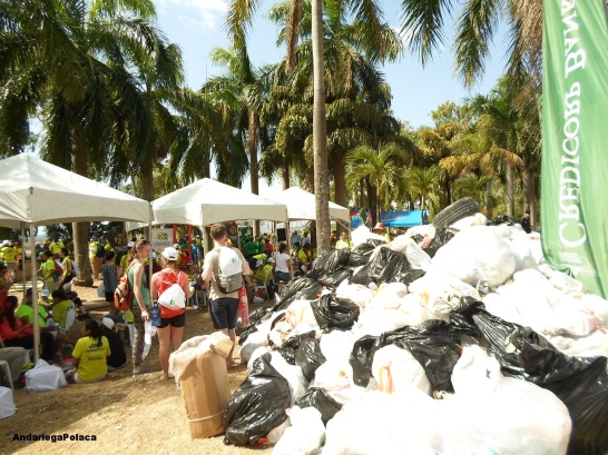 Zbieranie śmieci z plaży w Panamie przez woluntariusz ŚDM 2019/Recogiendo la basura de la playa por los voluntarios de JMJ en Panama 2019